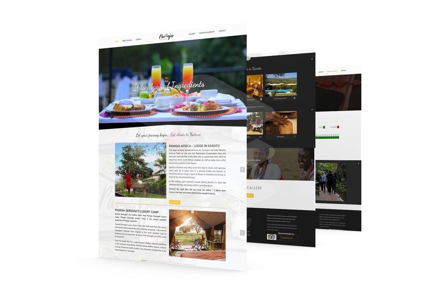 website design in Arusha